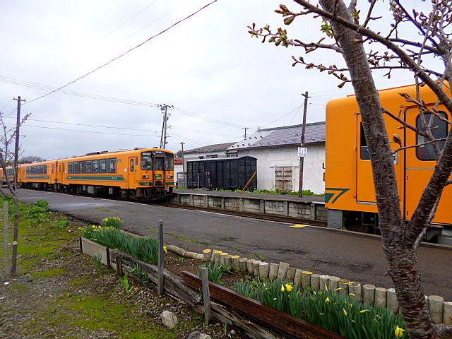 P1010390